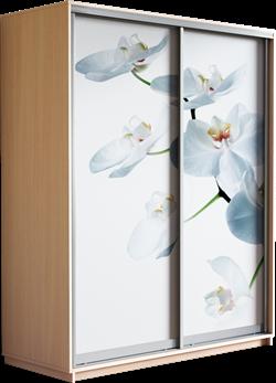 Шкаф-купе Дуо 1400/2200/600 (Фотопечать Орхидея) - фото 11891