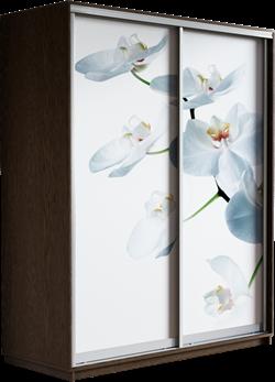 Шкаф-купе Дуо 1400/2400/450 (Фотопечать Орхидея) - фото 14871