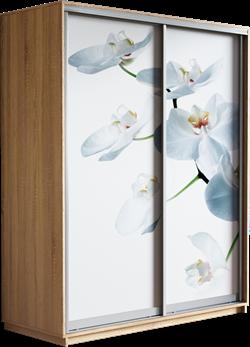 Шкаф-купе Дуо 1600/2200/450 (Фотопечать Орхидея) - фото 14932