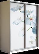 Шкаф-купе Дуо 1200/2200/600 (Фотопечать Орхидея)