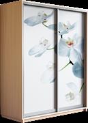 Шкаф-купе Дуо 1600/2200/600 (Фотопечать Орхидея)