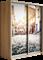 Шкаф-купе Дуо 1600/2200/450 (Фотопечать Старый Город) - фото 14914