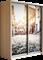 Шкаф-купе Дуо 1600/2400/450 (Фотопечать Старый Город) - фото 14924